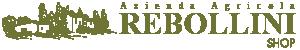 Shop Rebollini Logo